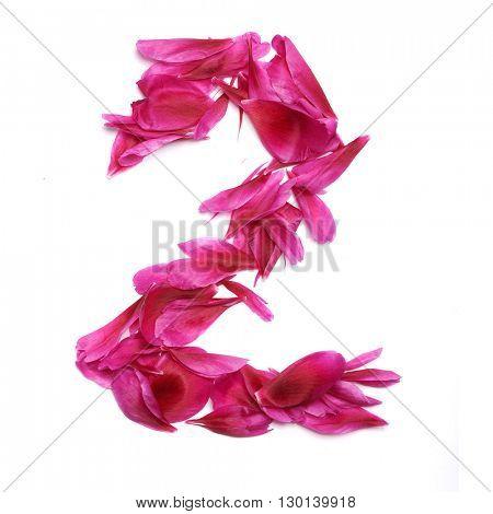 Peon petals digits. Digit 2