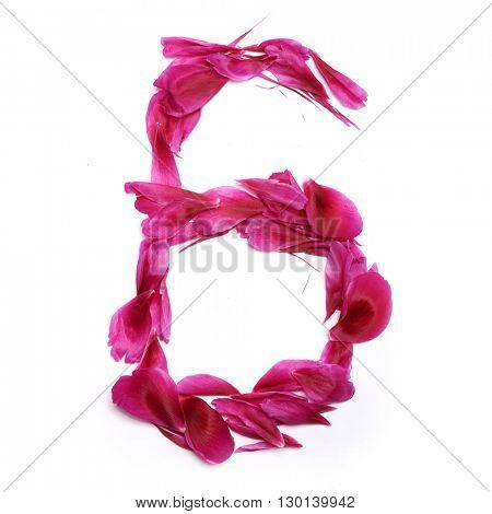 Peon petals digits. Digit 6
