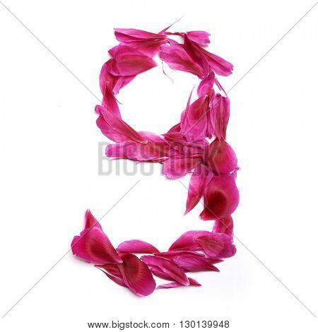 Peon petals digits. Digit 9