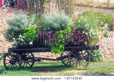 Horse carriage and flowers. Decoration of old goods in modern life. Riquewihr town , Alsace region. France