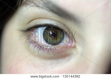 Close-up of a beautiful green eye