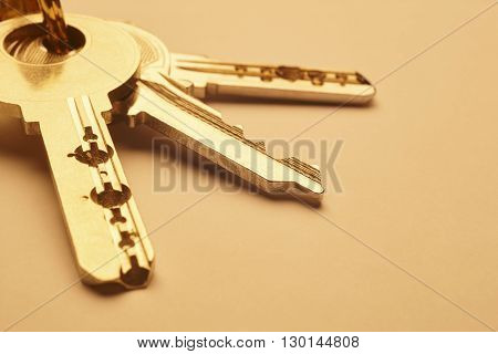Keyring with keys in golden tone over an empty background. Horizontal