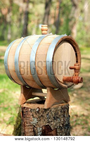 Oak wine barrel on wooden stump in forest