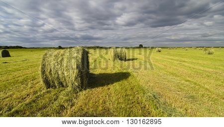 haystacks on the field with side lighting in the summer