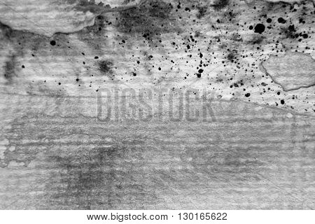 Black and White Macro Watercolour Textures 6
