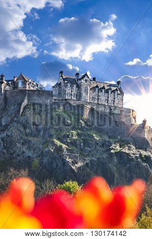 Edinburgh Castle With Spring Tulips In Scotland