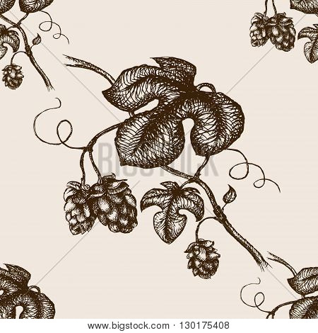 Branch of hops  sketch style seamless pattern vector illustration. Old engraving imitation.