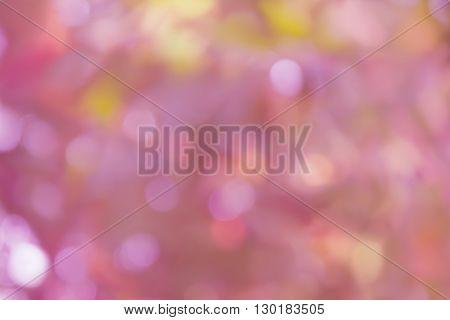 Glow Sweet Pink Pastel Bokeh In Fantasy Mood Romantic Background