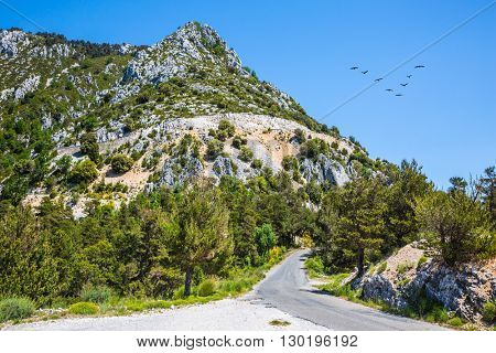 The largest alpine canyon Verdon, Provence, France. Turn of the mountain road. In the sky flies a flock of migrating cranes