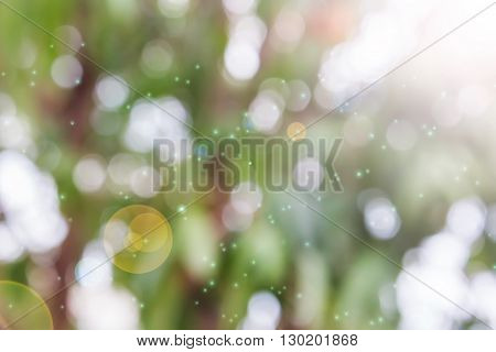 Fresh Summer Colour Orange Pink And Green Tone  Bokeh And Sunlight With Lens Flare Abstract Dreamy B