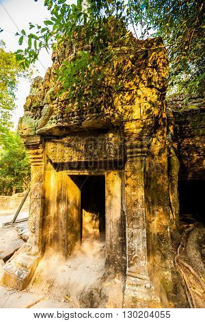 Ta Prohm Temple Angkor Wat