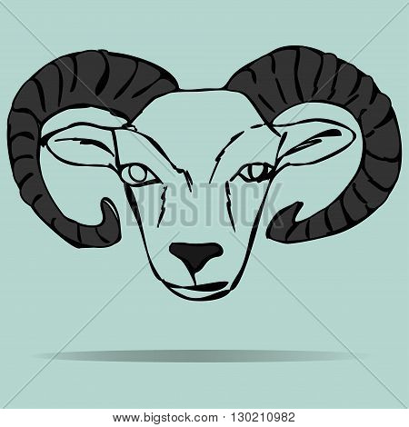 Head of ram mascot on a colored background
