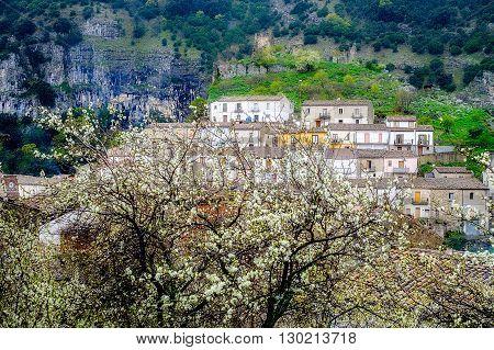 Spring in Cerchiara di Calabria. Southern Italy village