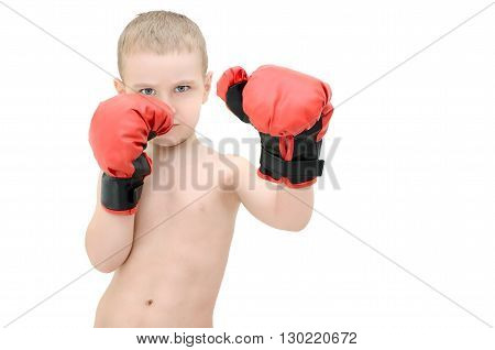 Little boy in boxing gloves on a white background