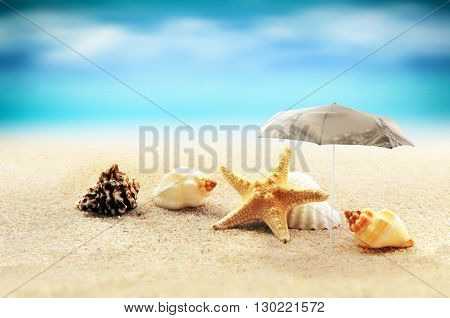 starfish with parasol and shells on the sandy beach