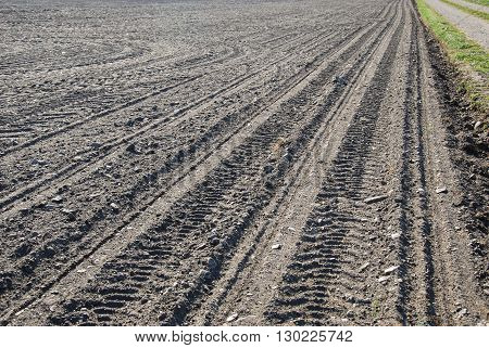 Black soil with tracks in a newly sowed corn field