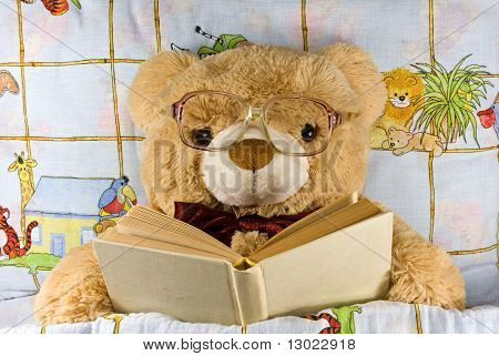 teddy-bear  reading a book