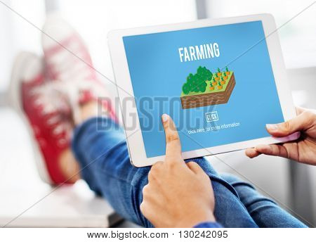 Agriculture Cultivation Growing Concept