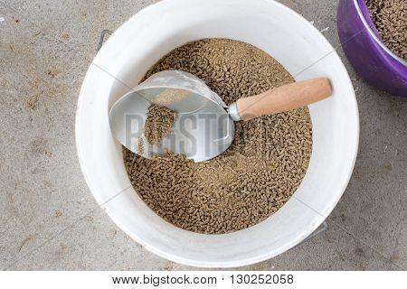 Cow's Pellets In Bucket