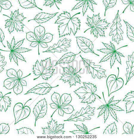 Seamless carved green leaves pattern for ecology theme or retro wallpaper design with sketched foliage of maple and oak, chestnut and basswood trees and grape vines randomly scattered on white background