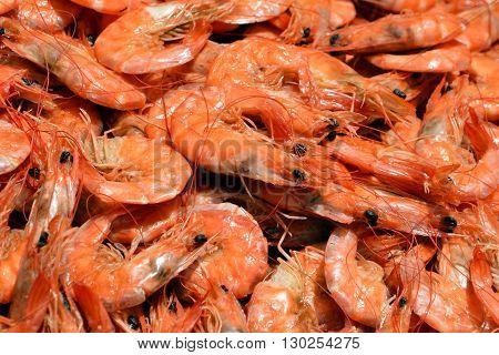 Fresh shrimp on ice. Fresh seafood on a fish market stall.