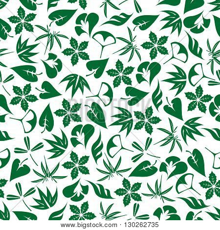 Seamless emerald green sprouts of bamboo and palm, leaves of clover and ginkgo biloba, twigs of aloe vera and poinsettia pattern on white background. May be use as fabric print or wallpaper design