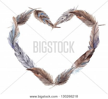 Watercolor brown gray grey blue feather heart vector isolated