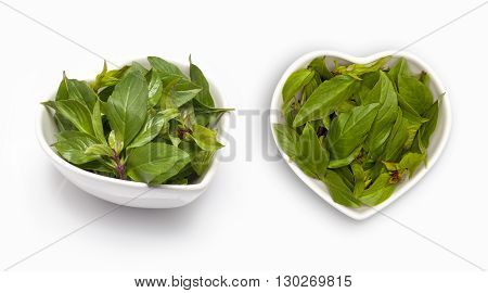 Basil leaves  in a heart shaped bowl, isolated on white