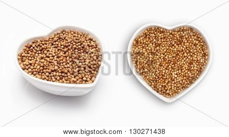 Coriander seeds  in a heart shaped bowl, isolated on white