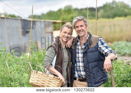 Cheerful couple of farmers standing in vegetable garden