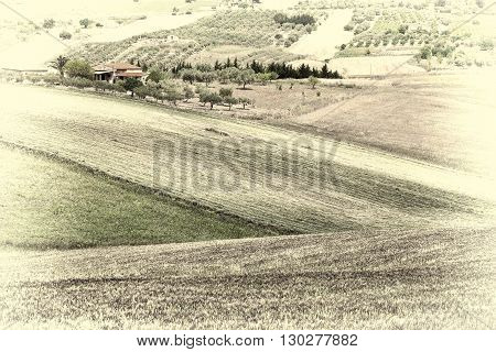 Stubble Fields on the Hills of Sicily Retro Image Filtered Style