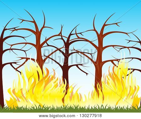 The Natural disaster fire in wood.Vector illustration