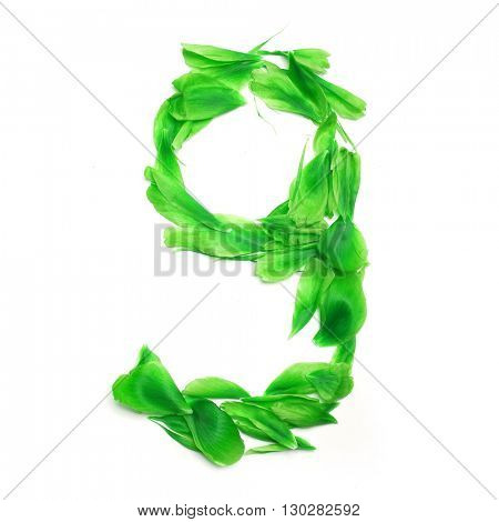 Green petals digits. Digit 9