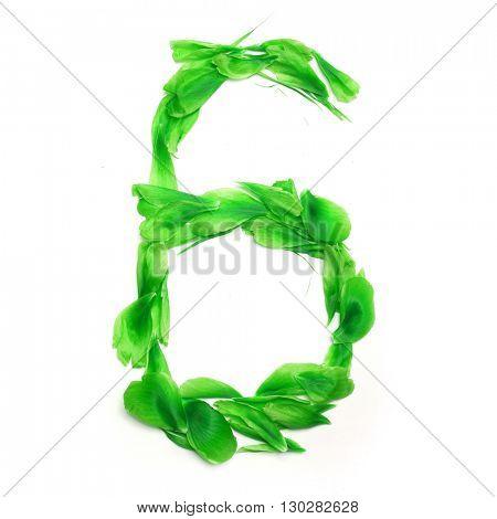 Green petals digits. Digit 6