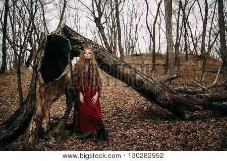 Beautiful witch who lives in the woods