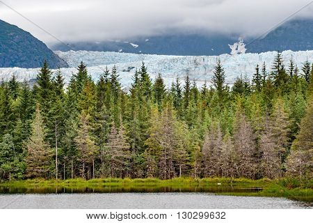 Mendenhall Glacier Landscape Panorama View