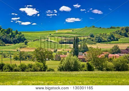 Idyllic village in pure green nature Zagorje region of Croatia
