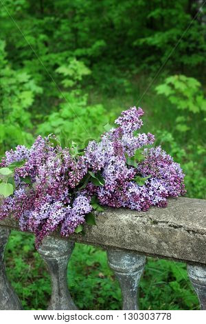 A bouquet of lilacs lying on the stone railing on the background of nature.