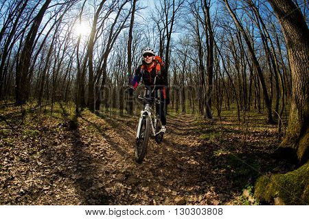 Rider in action at Freestyle Mountain Bike Session. Cyclist traveling in the Forest