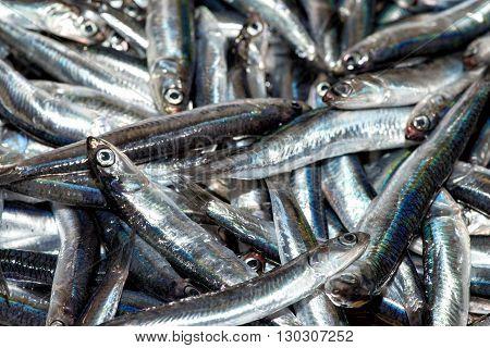 Fresh Anchovies Fish At The Market