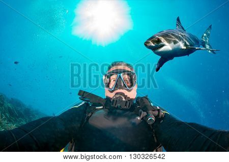 Underwater Selfie With White Shark Ready To Attack