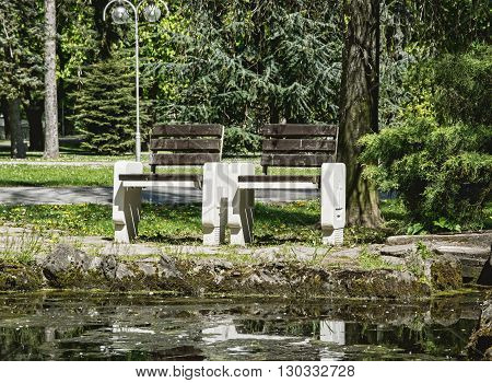 Wooden benches reflecting in water in the park. Seasonal natural scene. Place to relaxation. City park in spring time.