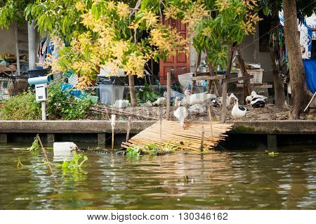 Bangkok Thonburi Klongs - Canals View