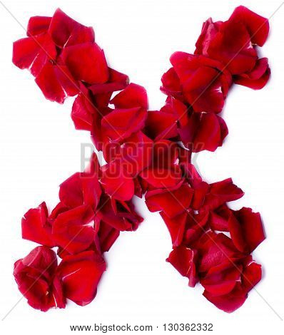 Alphabet X Made From Red Rose