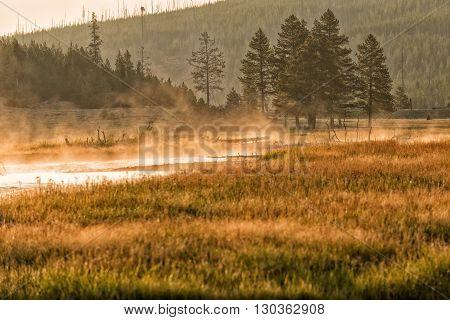 Golden Sunrise In Yellowstone River