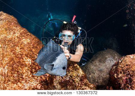 Beautiful Latina Diver Girl While Touching A Fish