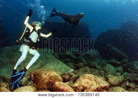 Blonde Woman Playing With Sea Lion