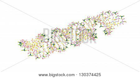 Deoxyribonucleic acid or DNA is a molecule that carries most of the genetic instructions used in the growth development functioning and reproduction of all known living organisms. 3d illustration