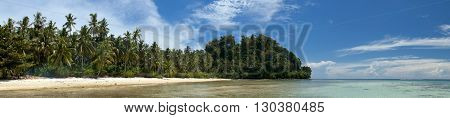 Turquoise Tropical Polynesian Paradise Palm Beach Ocean Sea Crystal Water Borneo Indonesia