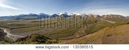 Alaska Denali Park View